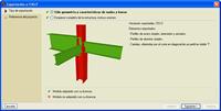 Exportación al formato CIS/2. Pulse para ampliar la imagen